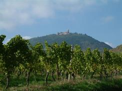 The castle seen from the South - © Cédric Populus